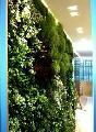 Giardino verticale indoor di tipo naturalistico